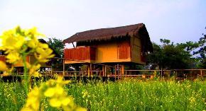 Diphlu River Lodge Kaziranga