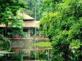 Infinity Kaziranga Wilderness Resort